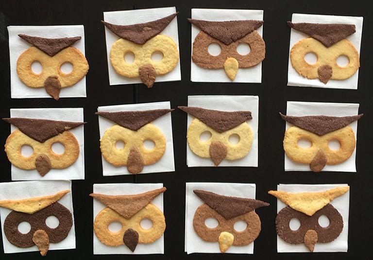 biscuits chouette au chocolat