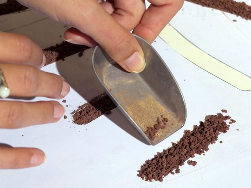 détail poudre de cacao