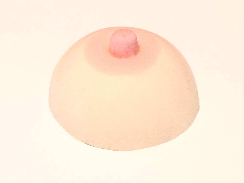 pannacotta boobs. seins