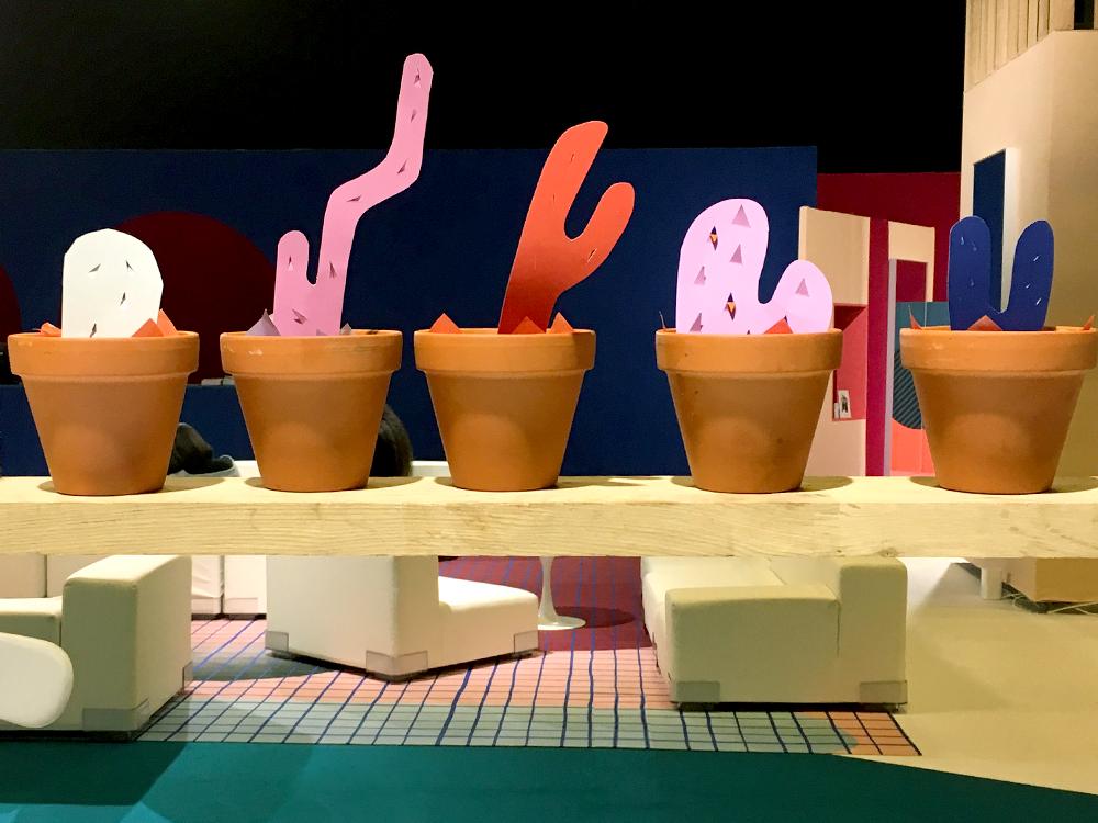 cake cactus